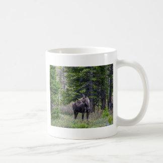 Moose Mother Coffee Mug