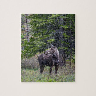 Moose Mother Jigsaw Puzzle