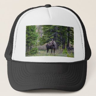 Moose Mother Trucker Hat
