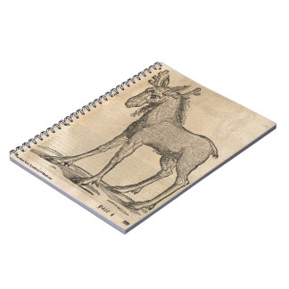 Moose Note Books