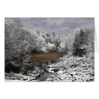 Moose on Snowy Oxbow Card