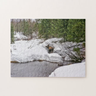 Moose Puzzle, 10x14 with 252 pieces Jigsaw Puzzle