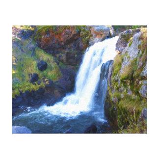 Moose River Falls Canvas Print
