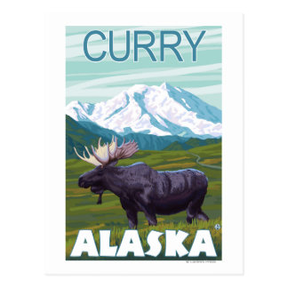 Moose Scene - Curry, Alaska Postcard