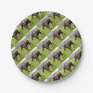 Moose you: Alaskan moose Paper Plate