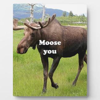 Moose you: Alaskan moose Plaque