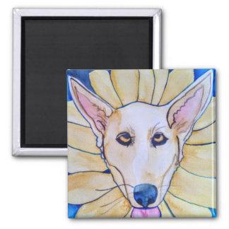 Moqui Sunflower Magnet