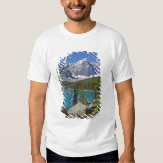 Moraine Lake, Canadian Rockies, Alberta, Canada T-shirts