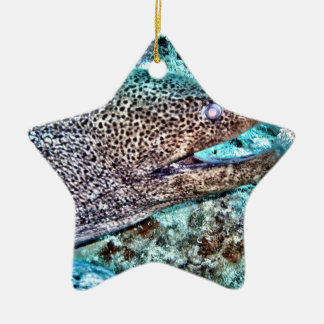 Moray Eel Ceramic Star Ornament