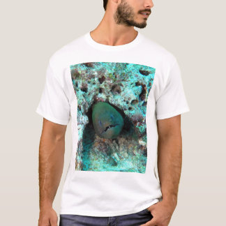 Moray eel in Fiji T-Shirt