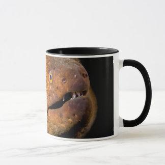 Moray Eel Mug