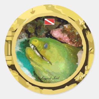 Moray Eel - Sticker