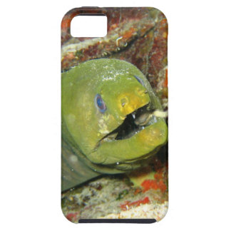 Moray Mouth Case For The iPhone 5