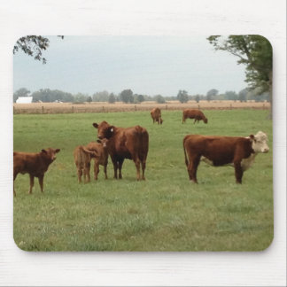 more brown cows mouse pad