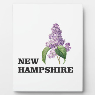 more New hampshire Plaque