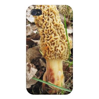 Morel Mushroom  iPhone 4/4S Case