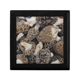 Morel Mushrooms Gift Box