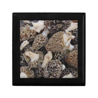 Morel Mushrooms Jewelry Box