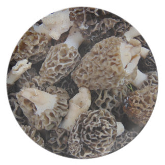 Morel Mushrooms Plate