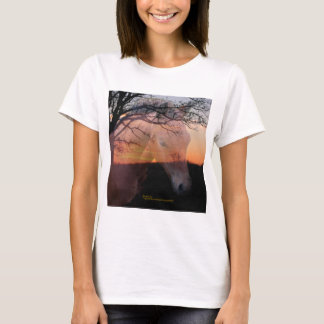 Morgan Colt in Sunset T-Shirt