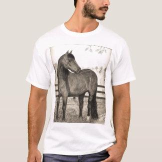 Morgan horse 2007 T-Shirt
