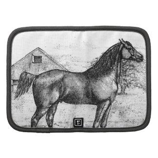 Morgan Horse Breed 1888 Vintage Drawing Art Organizer