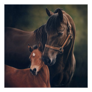 Morgan Mare and Foal by Lynn Peterson Poster