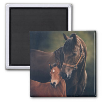 Morgan Mare and Foal Square Magnet