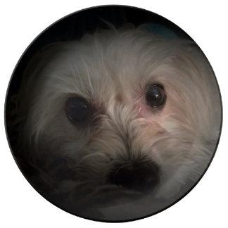 Morkie Dog Puppy Rescue Cute Porcelain Plate