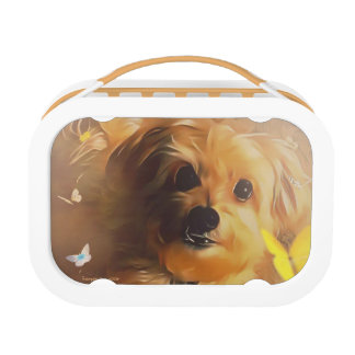 Morkie Puppy Dog Butterfly Cute Yellow Lunchbox