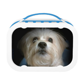 Morkie Puppy Dog Love Cute Lunchbox