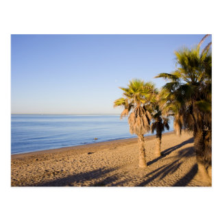 Morning at Marbella Beach in Spain Postcard