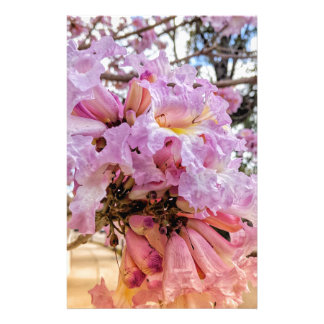 Morning Blooms Stationery