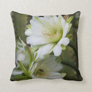 Morning Cactus Bloom Square Throw Pillow