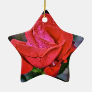 Morning Dew Ceramic Star Ornament
