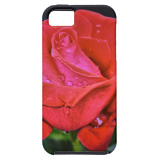 Morning Dew iPhone 5 Case