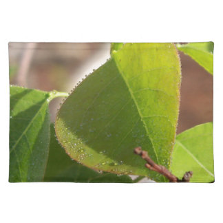 morning Dew on Chinese tallow leaf Placemat