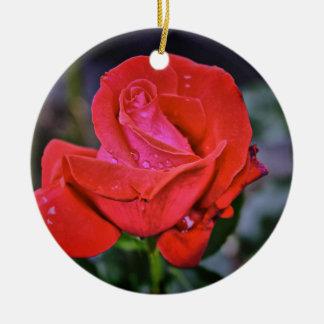 Morning Dew Round Ceramic Ornament