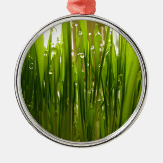 Morning dew Silver-Colored round ornament