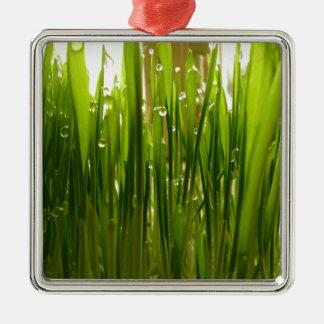 Morning dew Silver-Colored square ornament