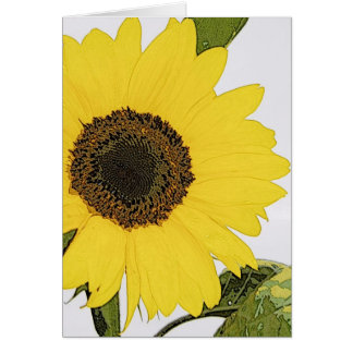 Morning Dew Sunflower Card