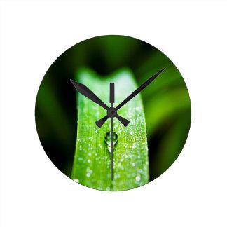 Morning Dew Water Droplet Wall Clocks