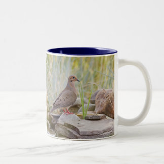Morning Dove Two-Tone Coffee Mug