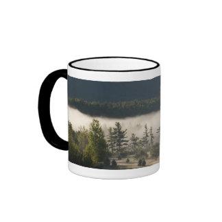 Morning Fog in the Adirondacks 3 Mugs