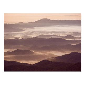 Morning fog in the southern Appalachian Postcard