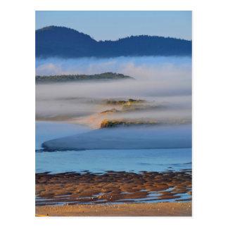 Morning fog over Netarts Bay, OR Postcard