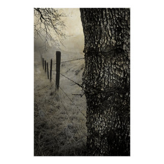 Morning Foggy Fence Line Posters