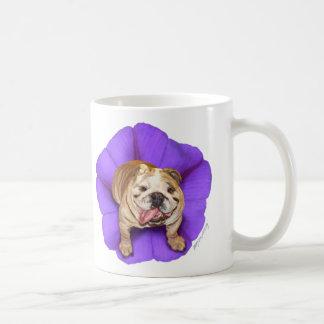 Morning Glory Bulldog Mug