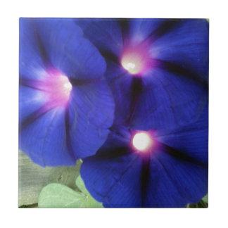 Morning Glory Flower Tile