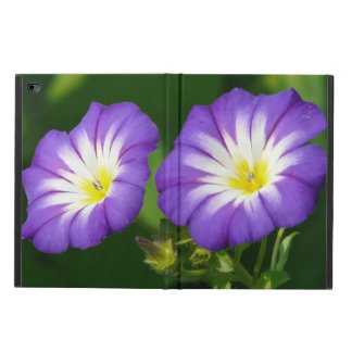 Morning Glory Flowers Powis iPad Air 2 Case